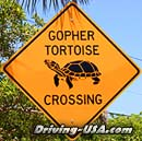 Road Sign: Gopher Crossing